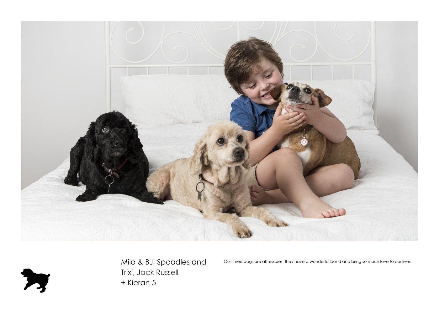 sydney-pet-kids-photographer (8).jpg