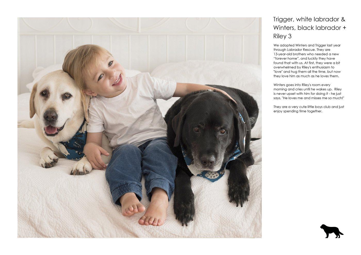 sydney-pet-kids-photographer (14).jpg