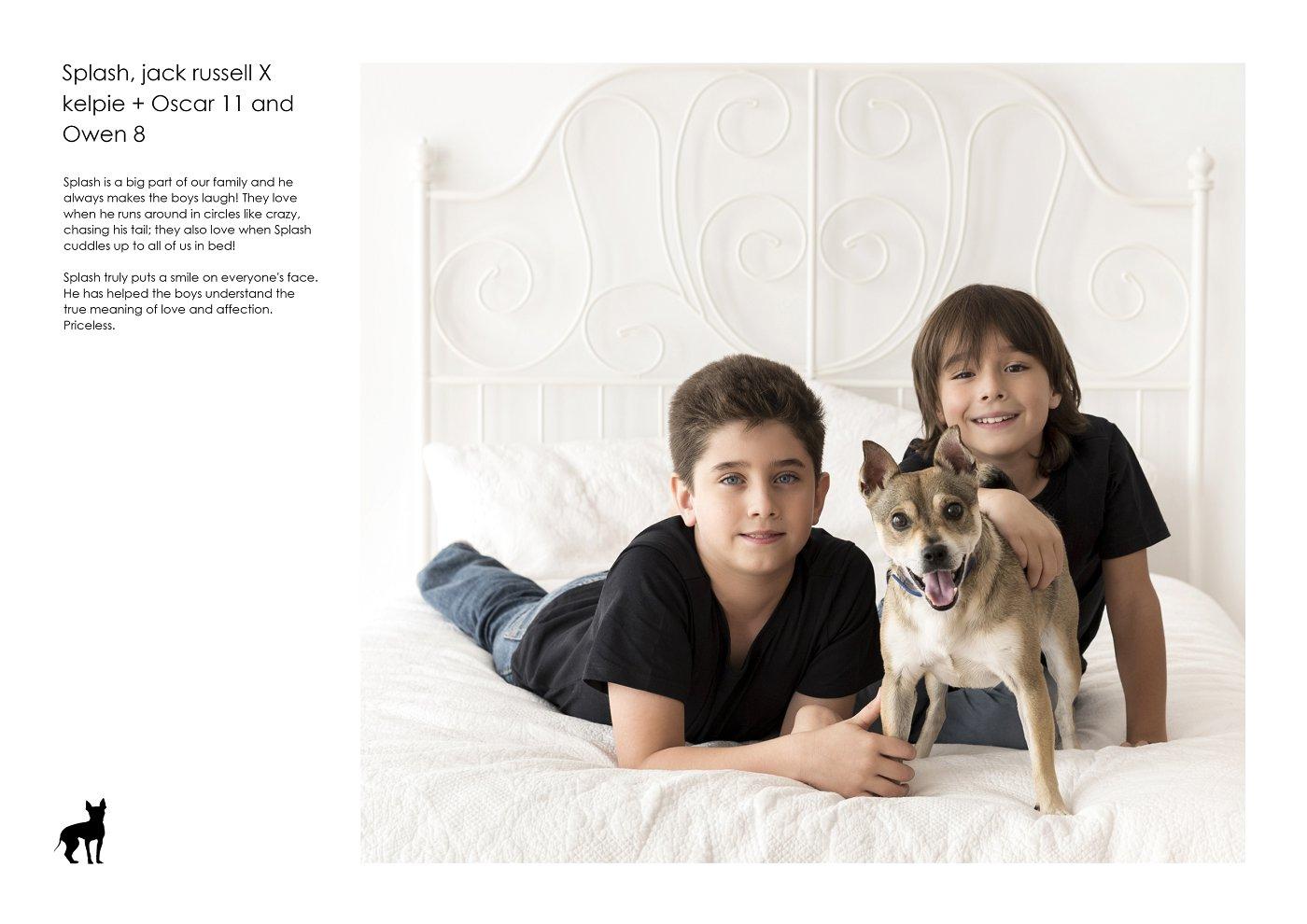 sydney-pet-kids-photographer (15).jpg