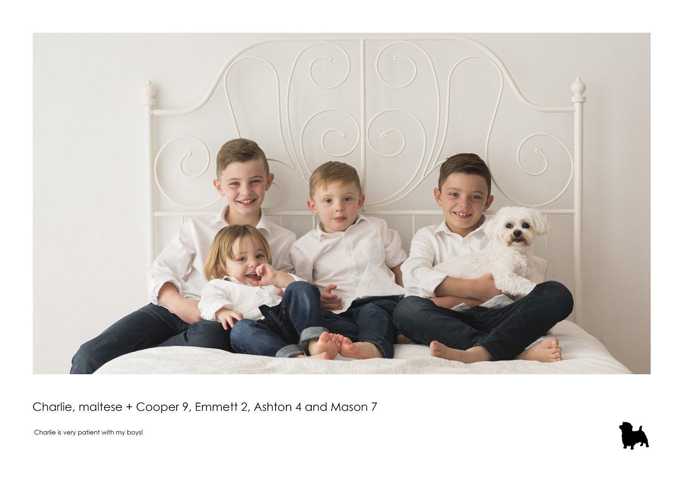sydney-pet-kids-photographer (17).jpg