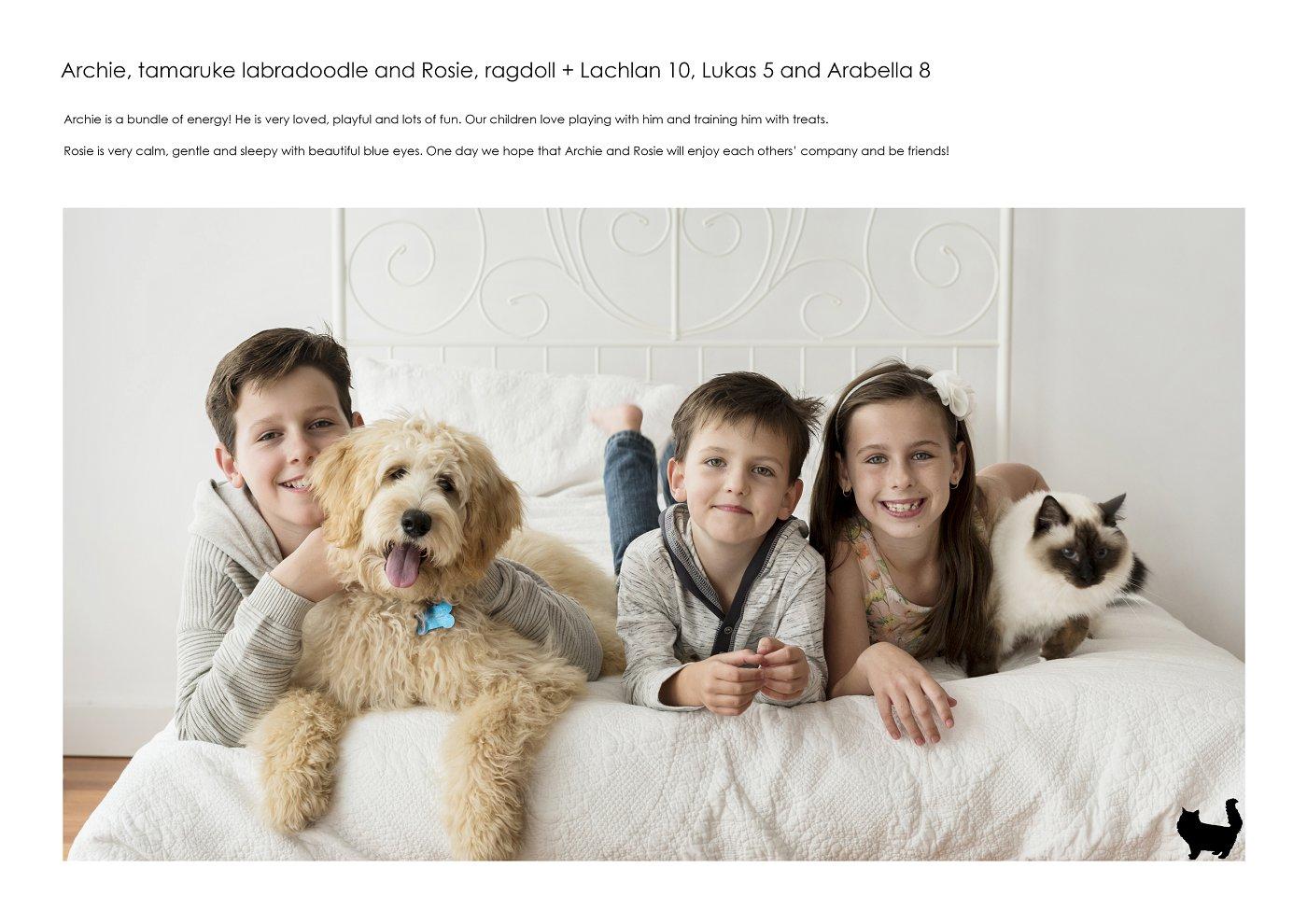 sydney-pet-kids-photographer (21).jpg