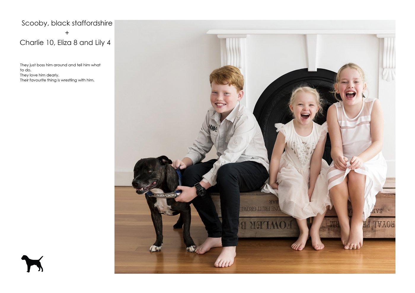 sydney-pet-kids-photographer (22).jpg