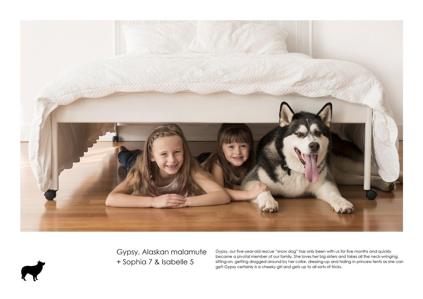 sydney-pet-kids-photographer (29).jpg
