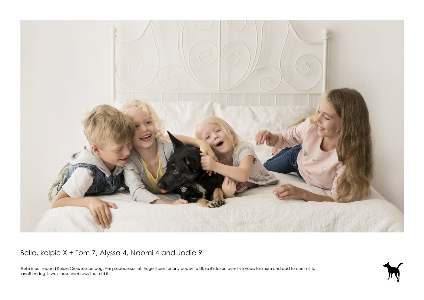 sydney-pet-kids-photographer (30).jpg