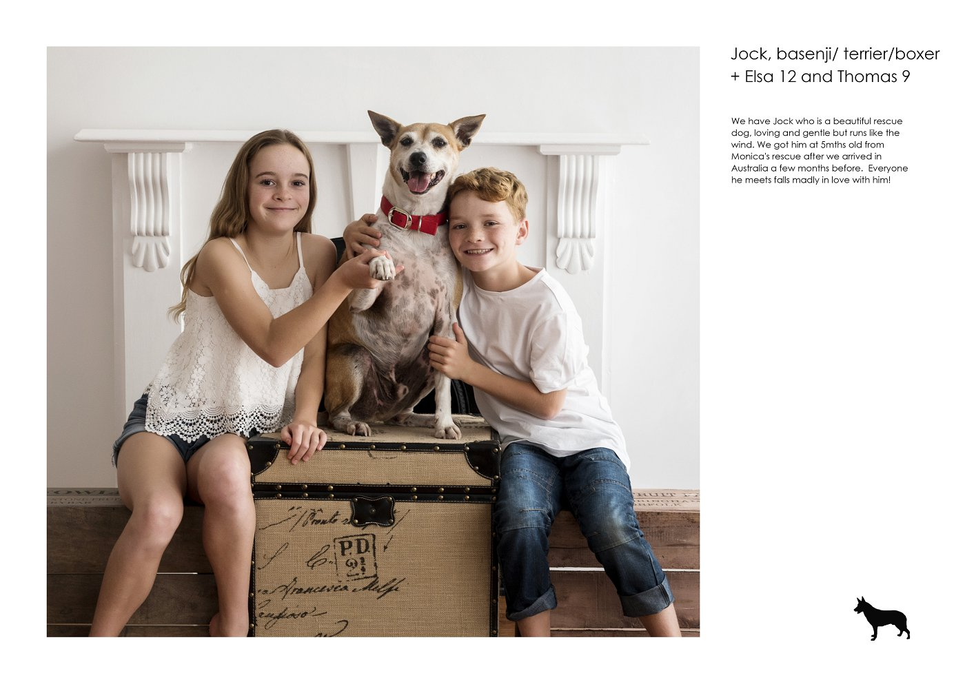sydney-pet-kids-photographer (42).jpg