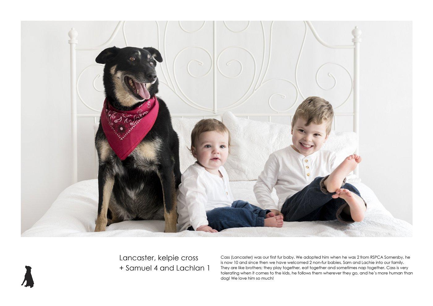 sydney-pet-kids-photographer (48).jpg