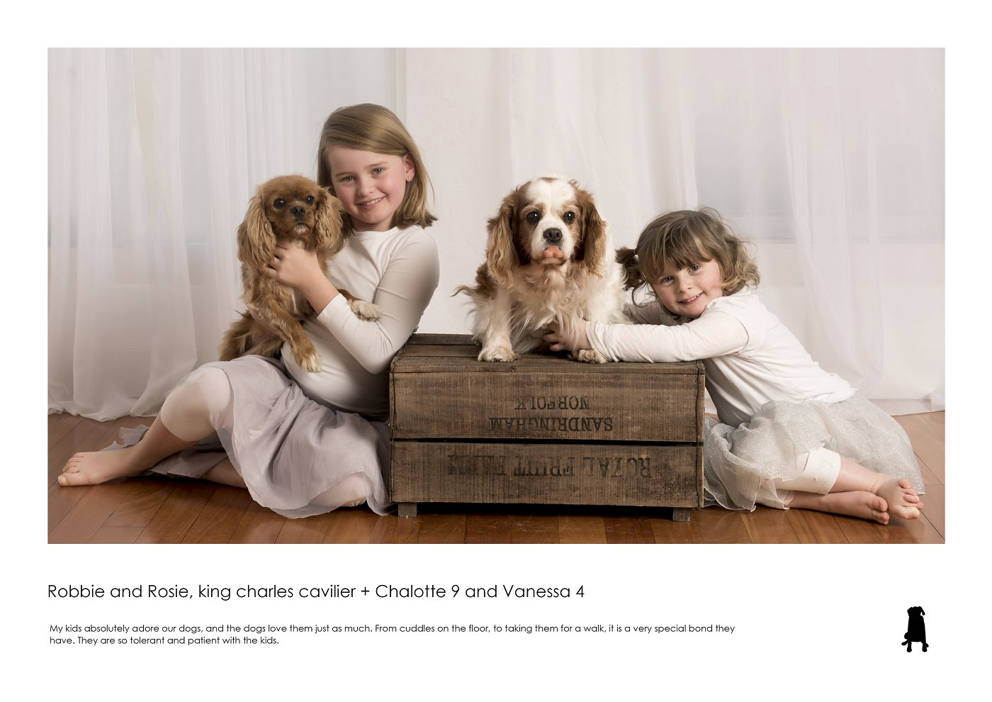 sydney-pet-kids-photographer (49).jpg
