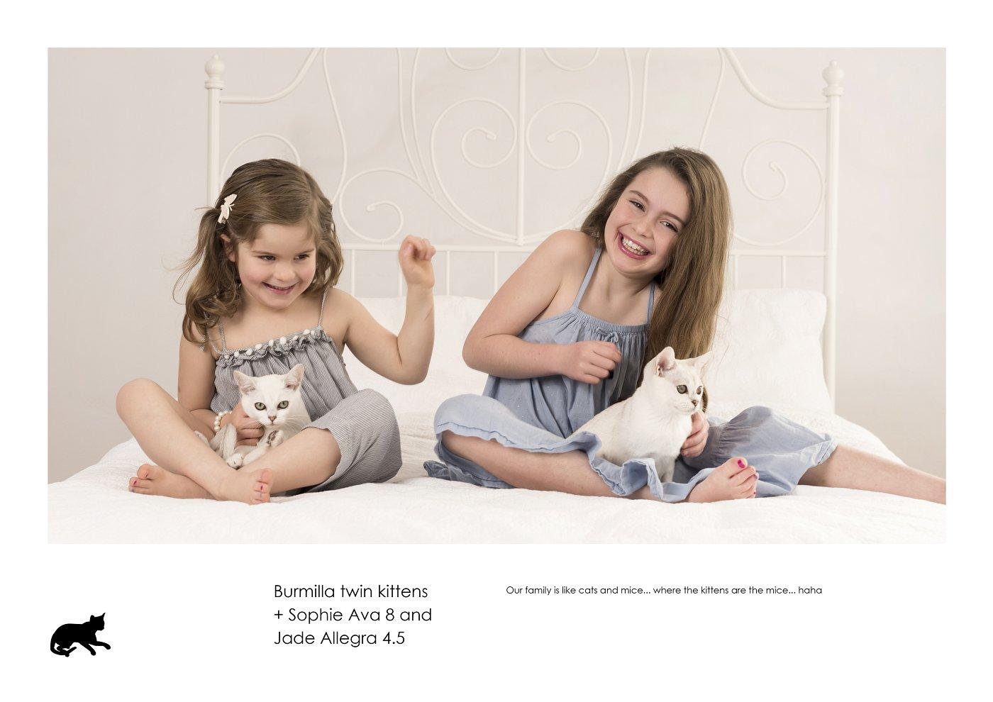 sydney-pet-kids-photographer (53).jpg