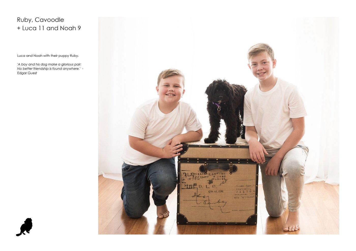sydney-pet-kids-photographer (54).jpg