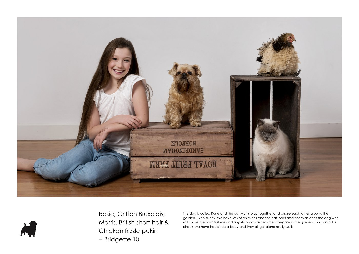 sydney-pet-kids-photographer (57).jpg