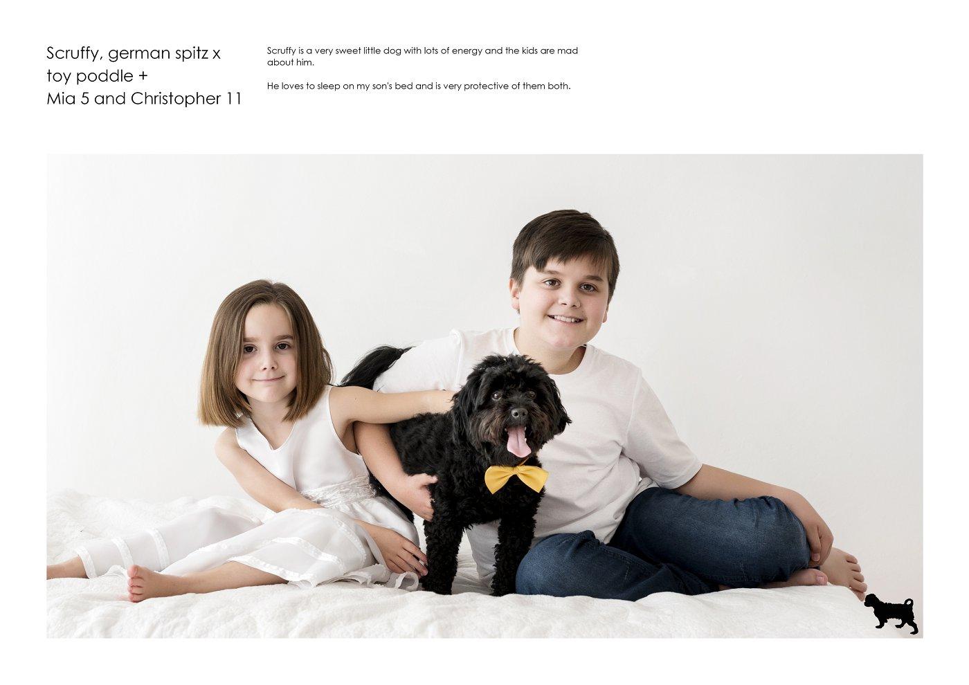 pet-photographer-sydney (78).jpg