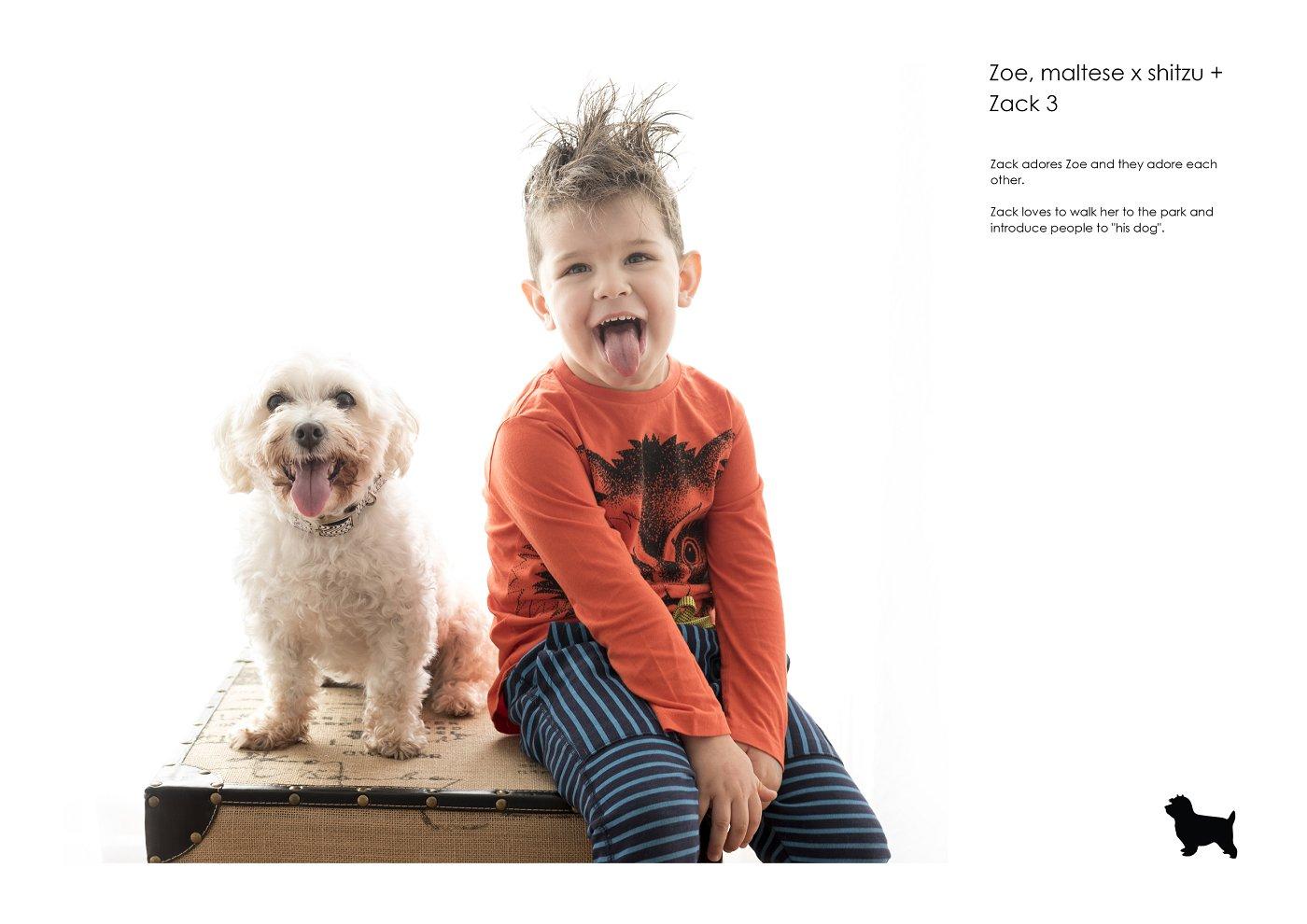 pet-photographer-sydney (1).jpg