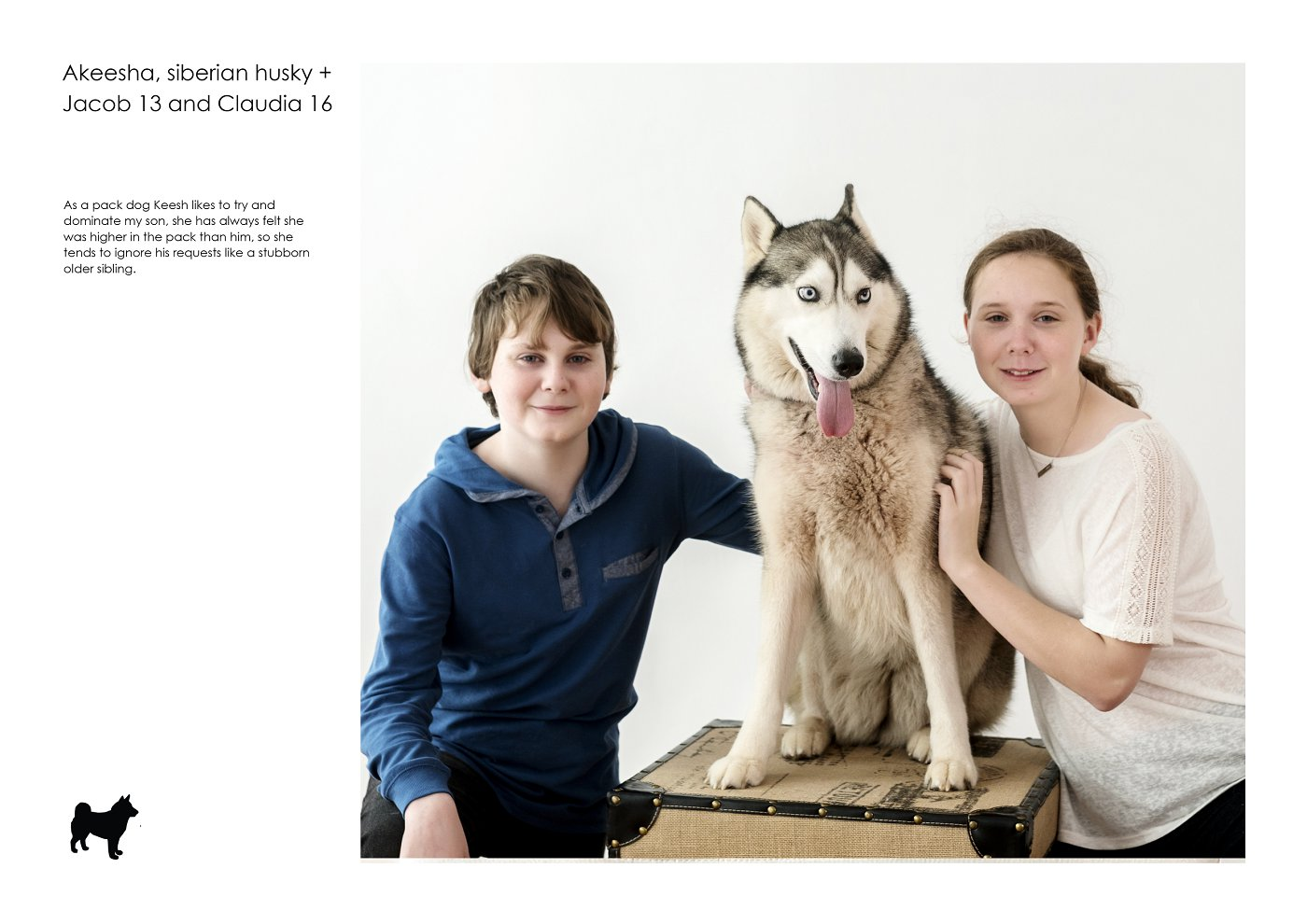 pet-photographer-sydney (2).jpg