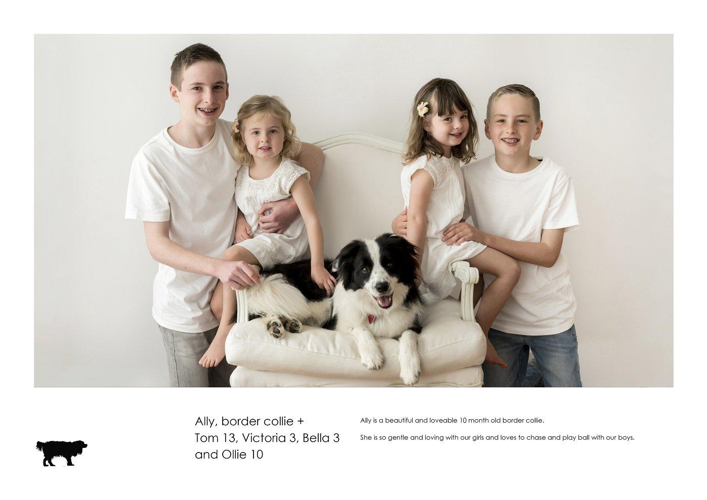 pet-photographer-sydney (3).jpg
