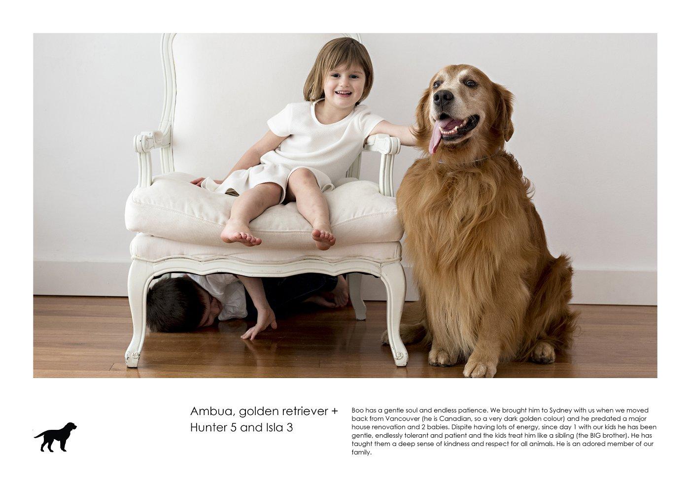 pet-photographer-sydney (4).jpg
