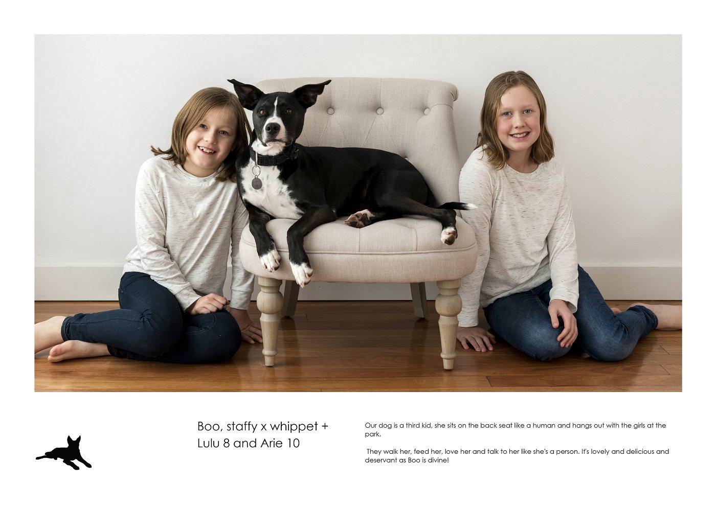 pet-photographer-sydney (12).jpg