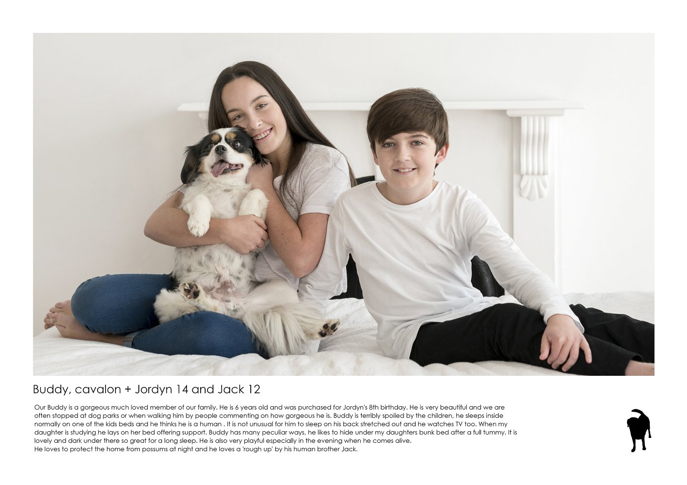 pet-photographer-sydney (14).jpg