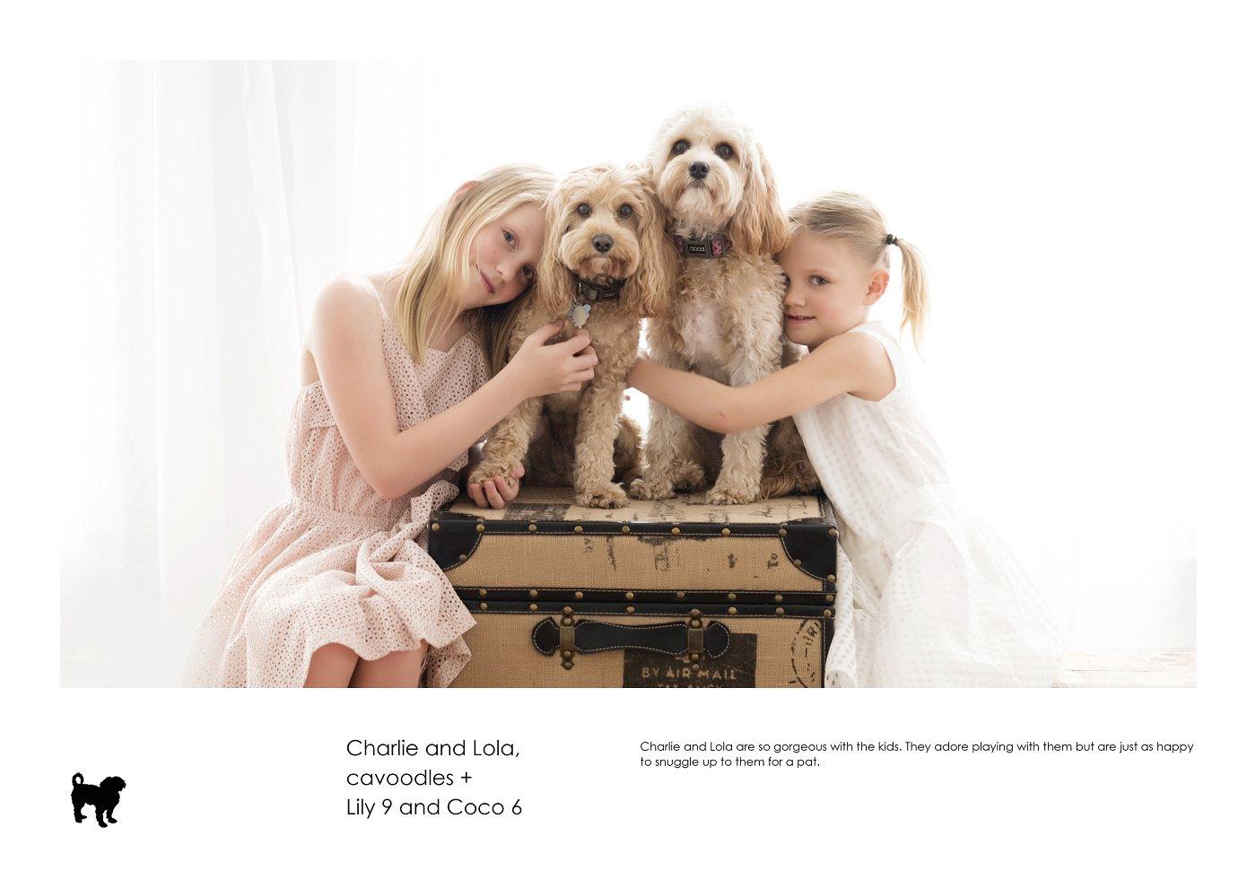 pet-photographer-sydney (18).jpg