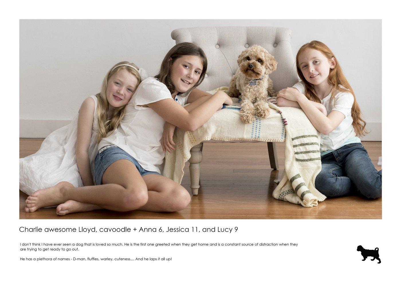 pet-photographer-sydney (17).jpg
