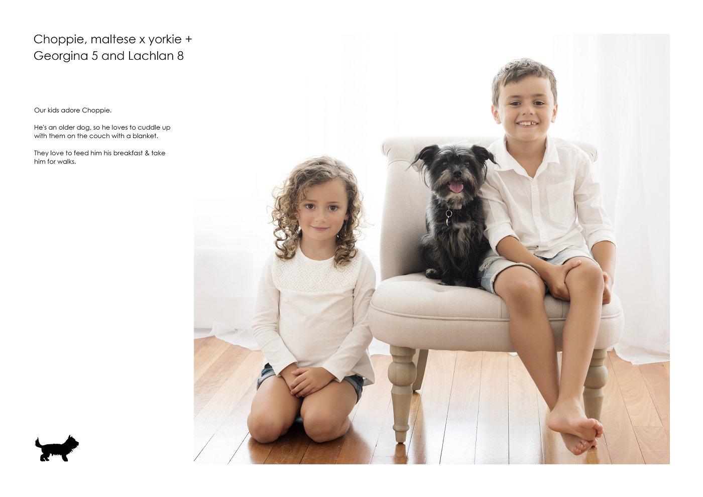 pet-photographer-sydney (22).jpg