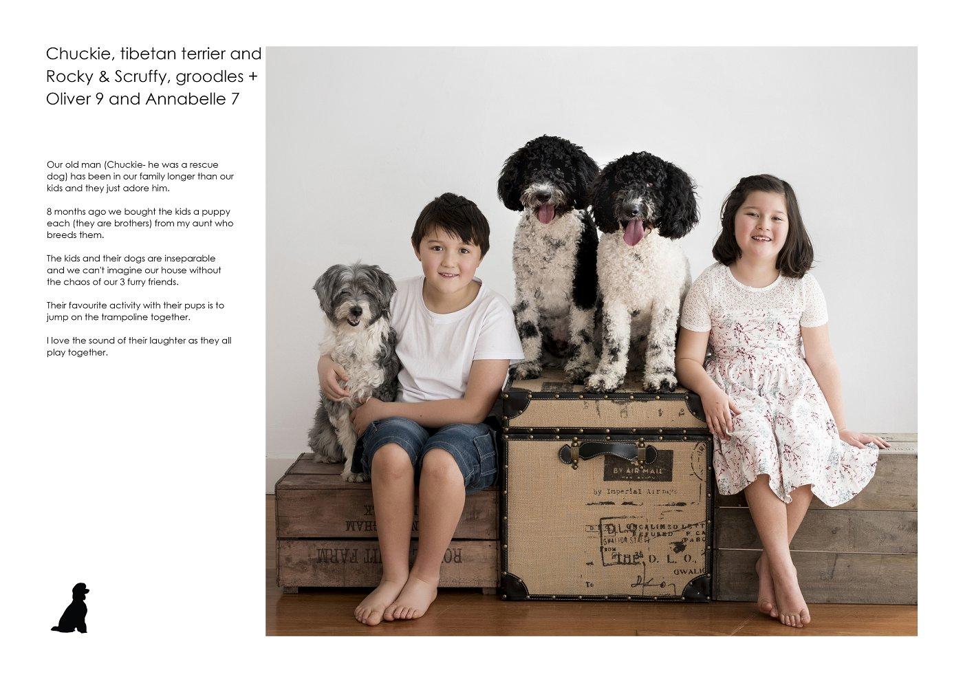 pet-photographer-sydney (23).jpg