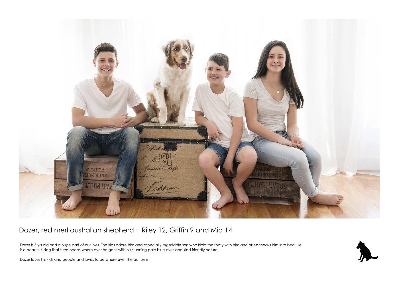 pet-photographer-sydney (25).jpg