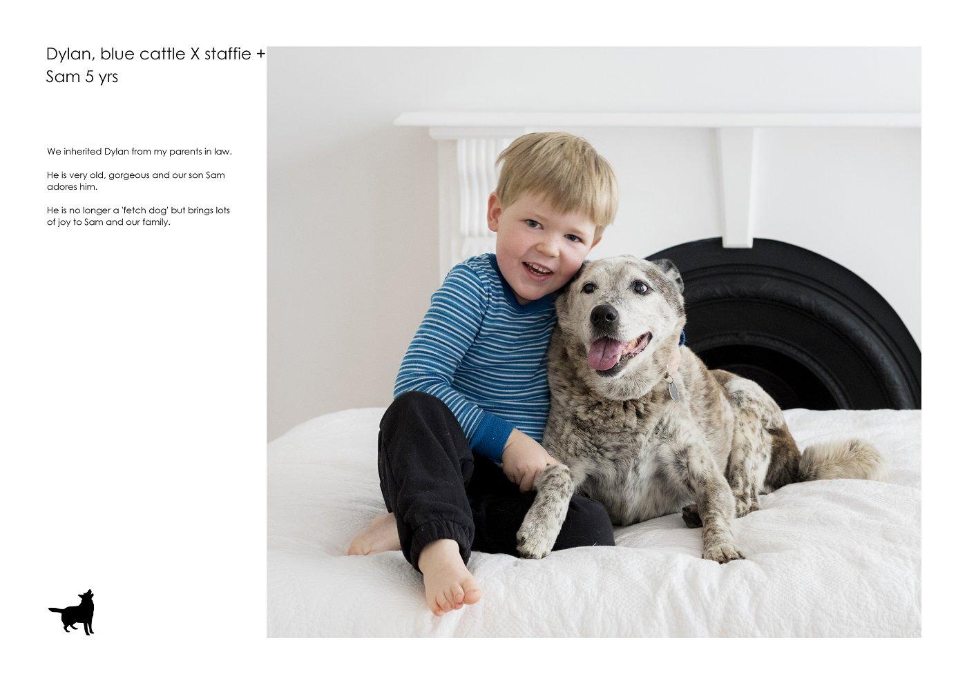 pet-photographer-sydney (26).jpg