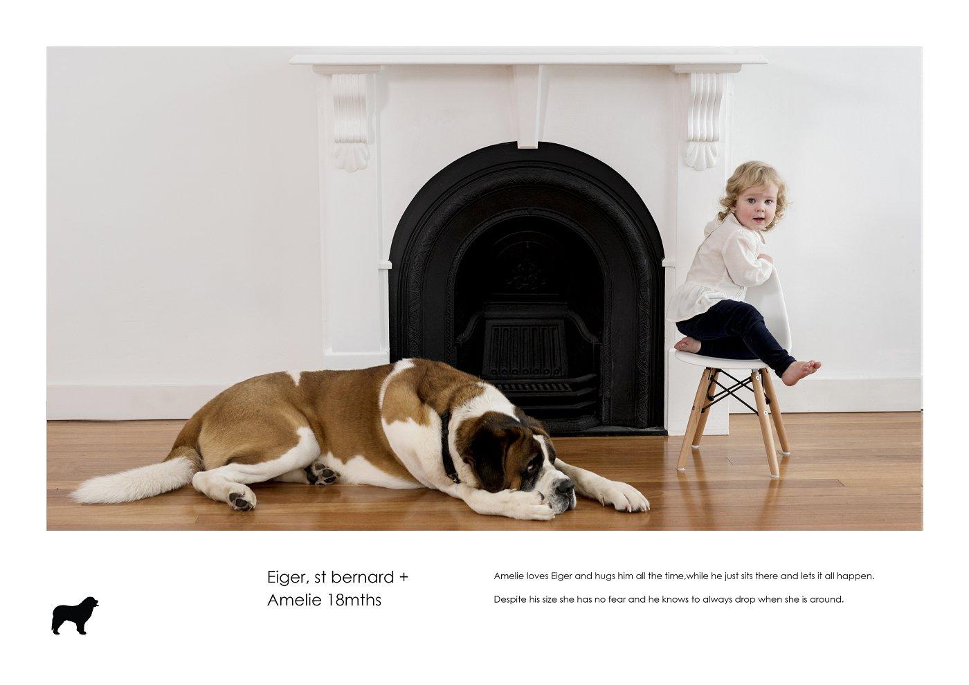 pet-photographer-sydney (27).jpg