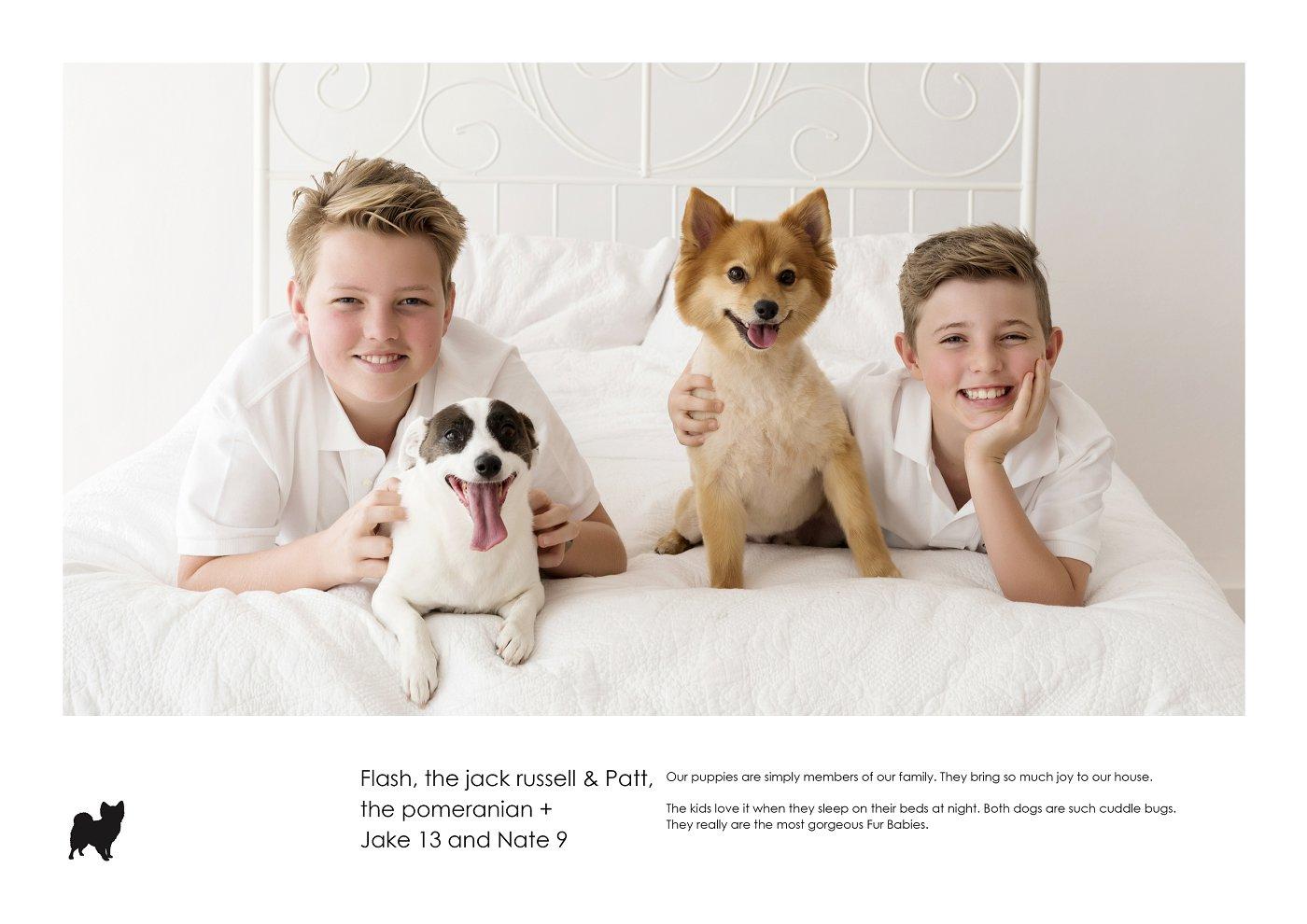 pet-photographer-sydney (29).jpg