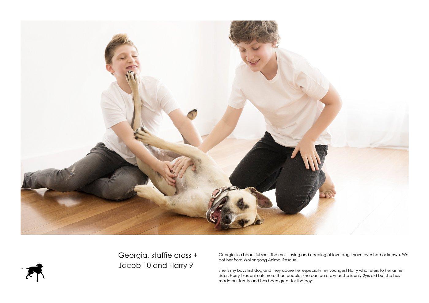 pet-photographer-sydney (30).jpg