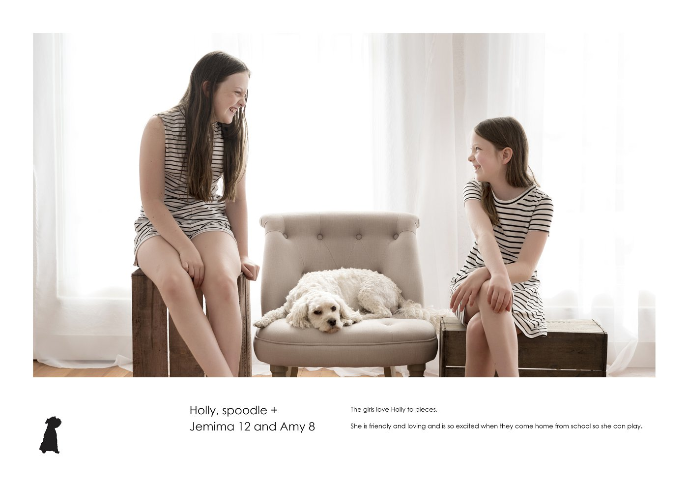 pet-photographer-sydney (35).jpg