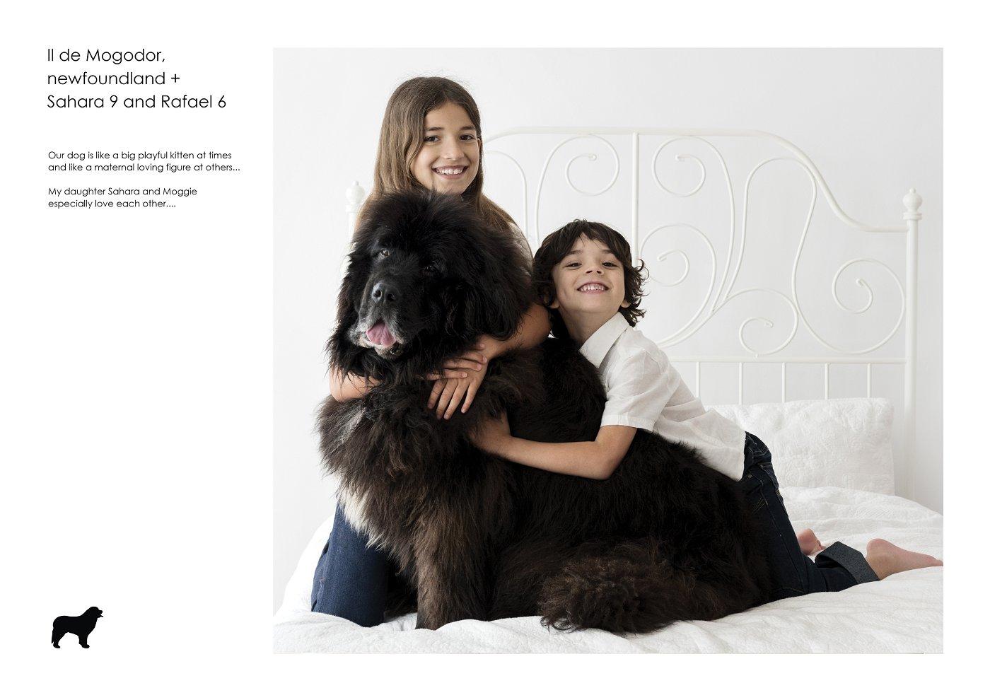 pet-photographer-sydney (36).jpg