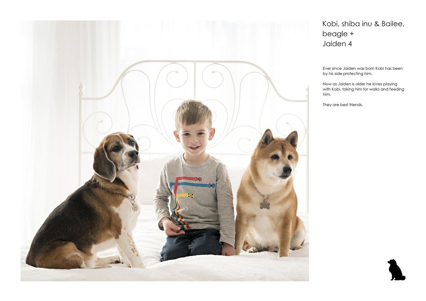 pet-photographer-sydney (41).jpg