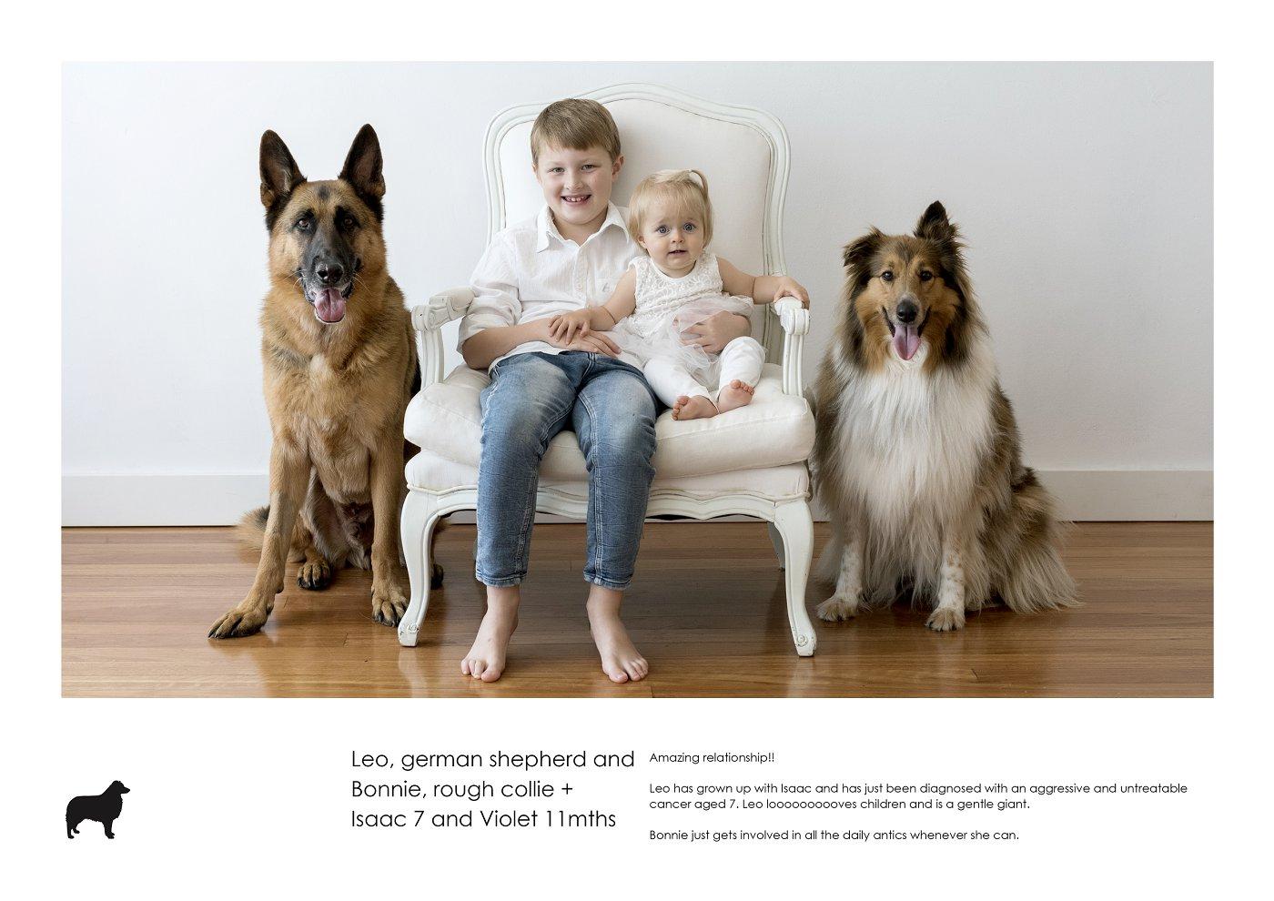pet-photographer-sydney (42).jpg