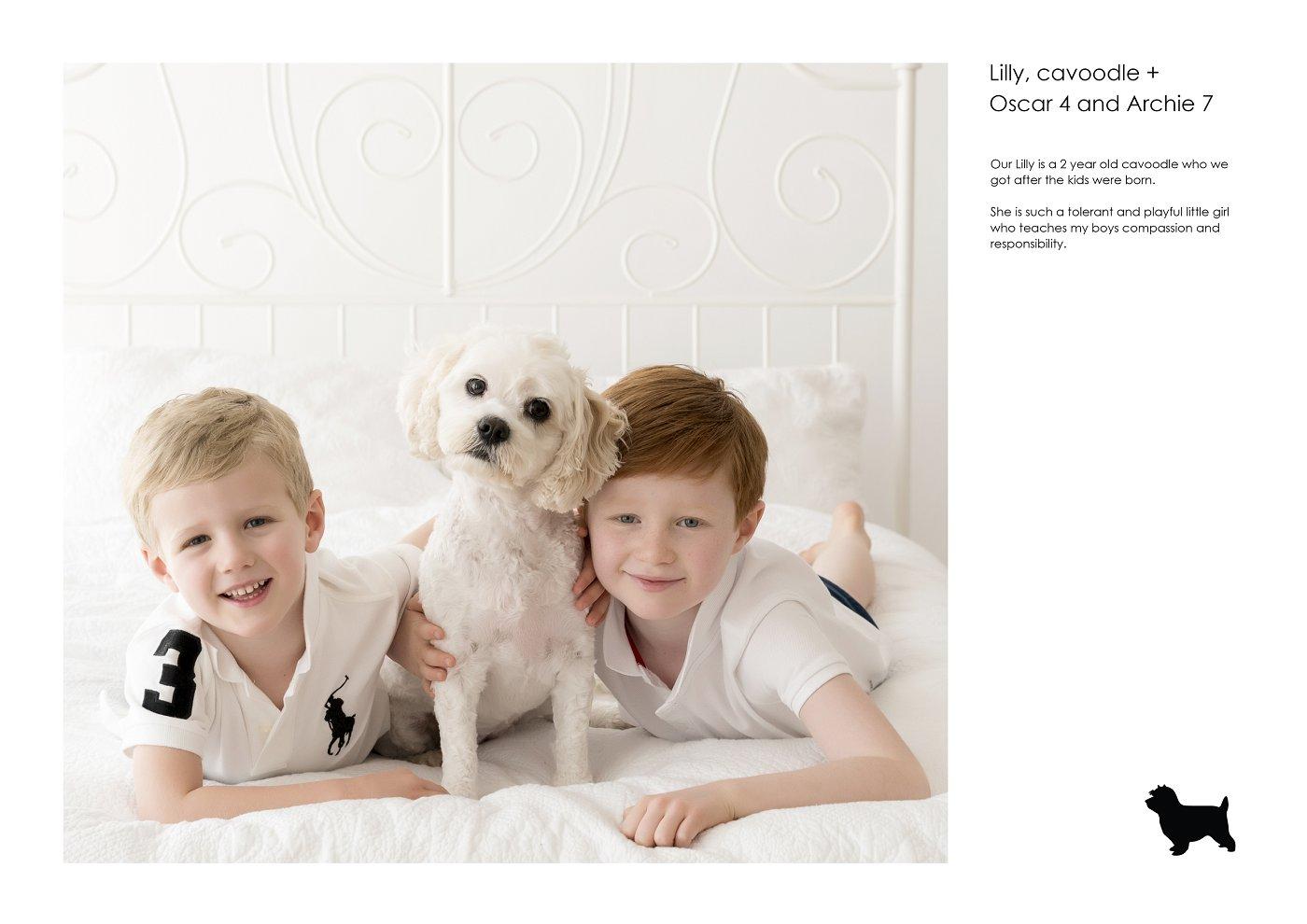 pet-photographer-sydney (43).jpg