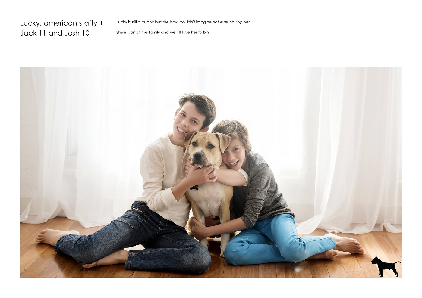 pet-photographer-sydney (46).jpg
