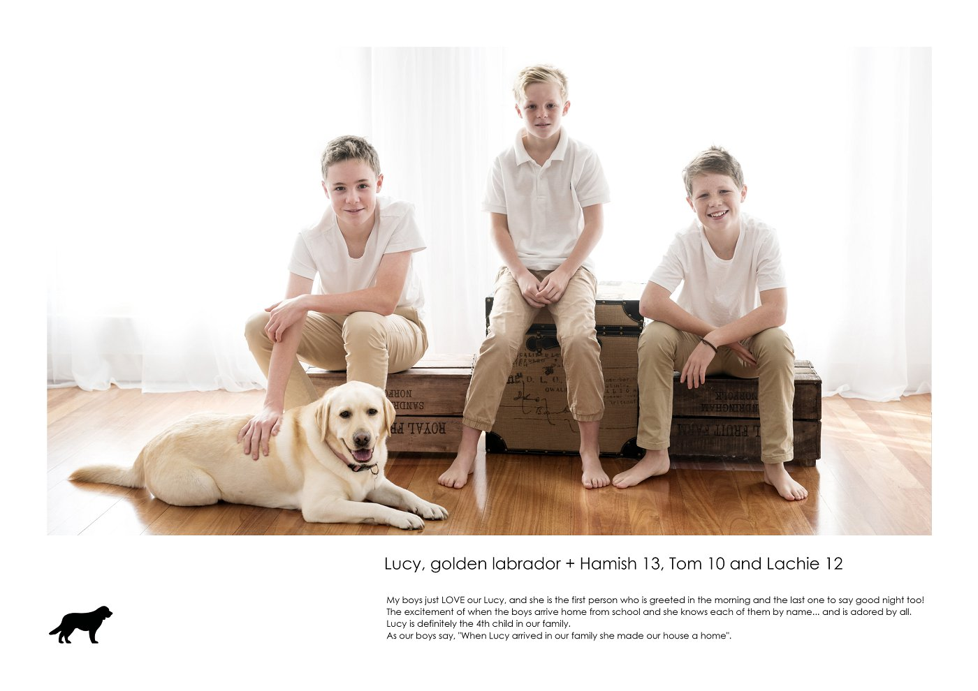 pet-photographer-sydney (47).jpg