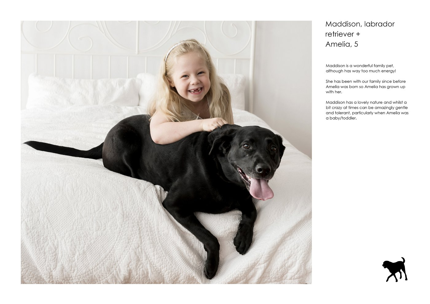 pet-photographer-sydney (48).jpg