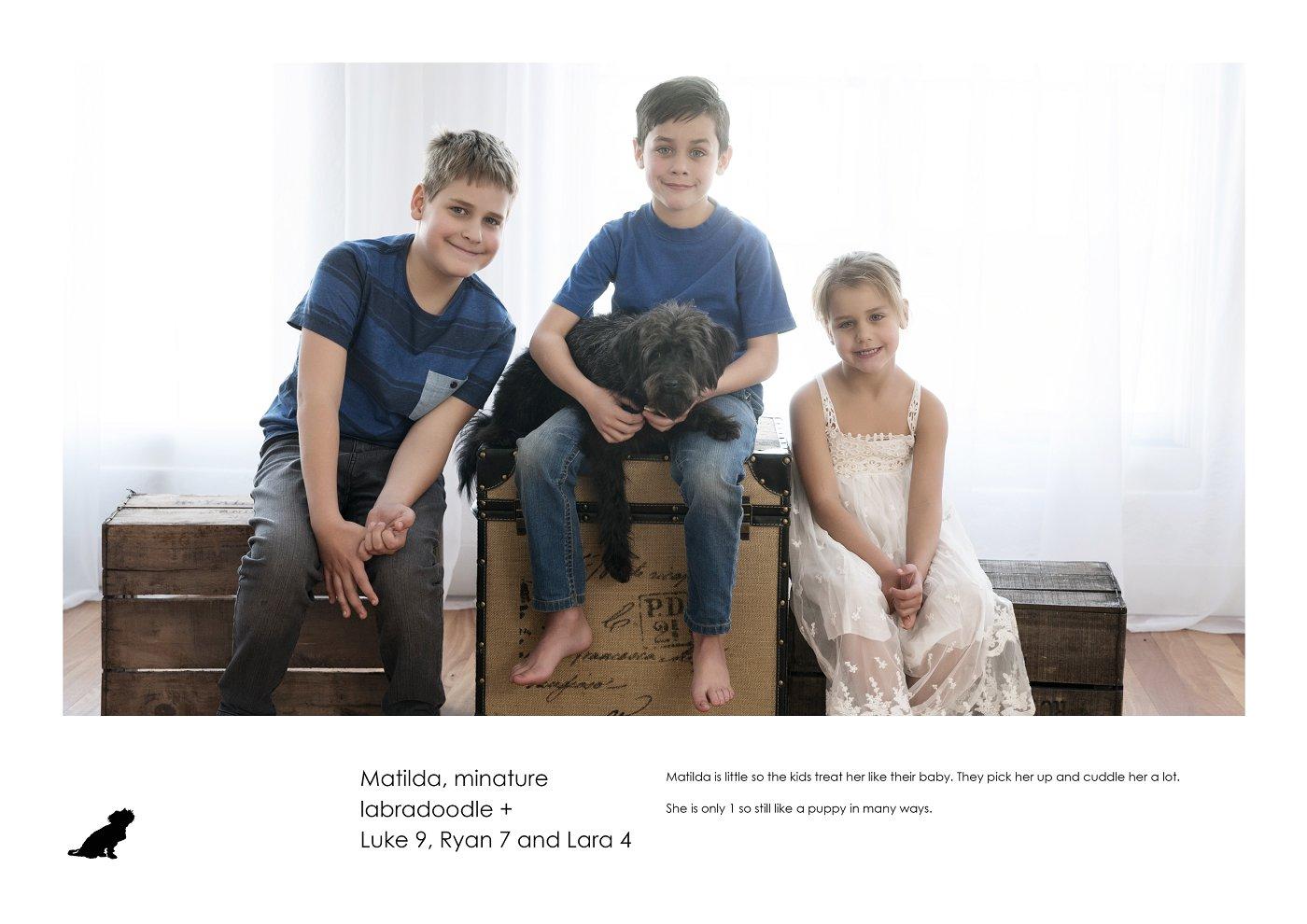 pet-photographer-sydney (49).jpg