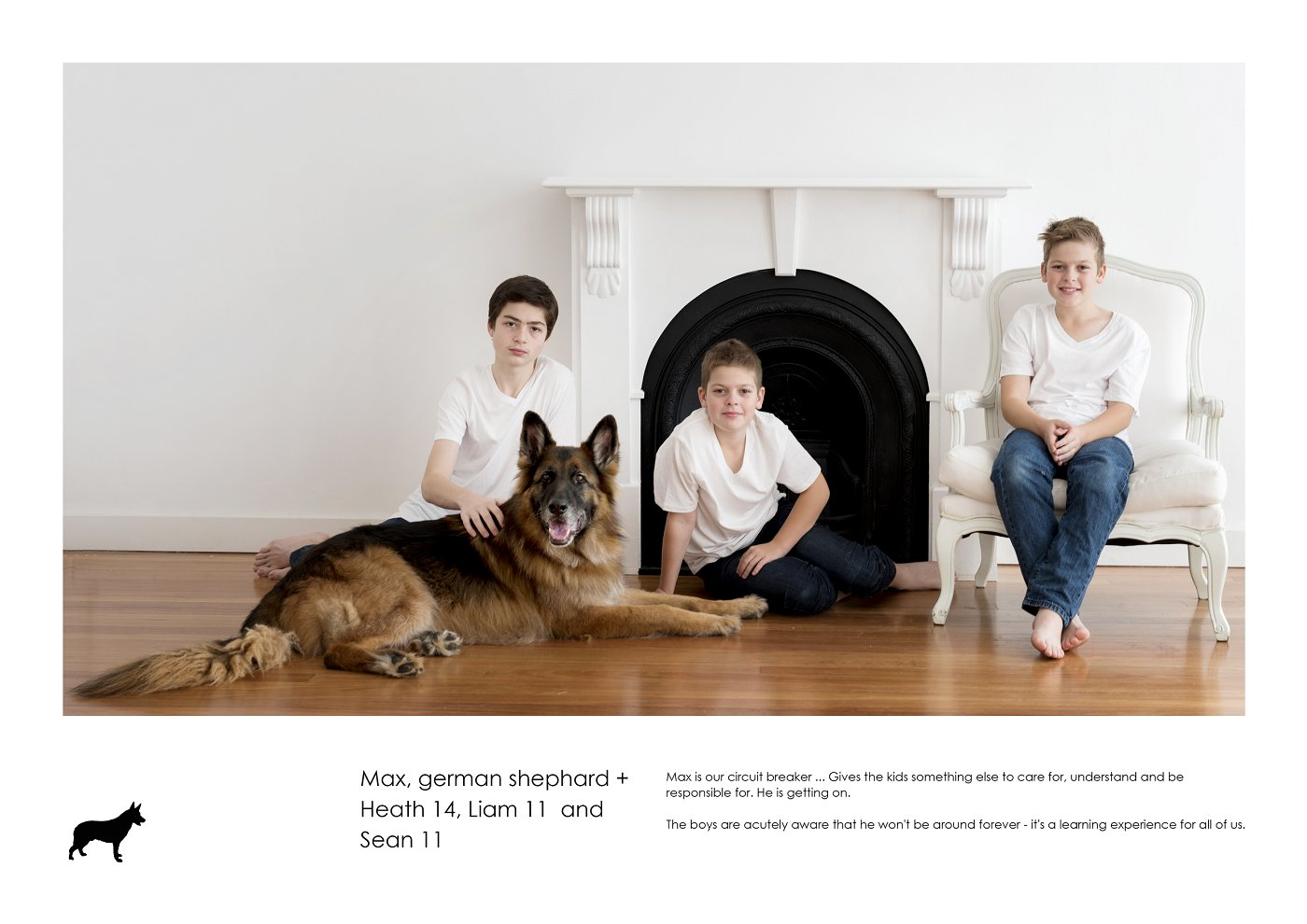 pet-photographer-sydney (50).jpg