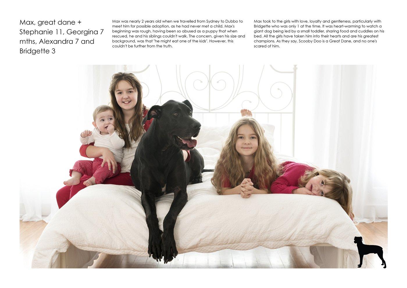 pet-photographer-sydney (51).jpg