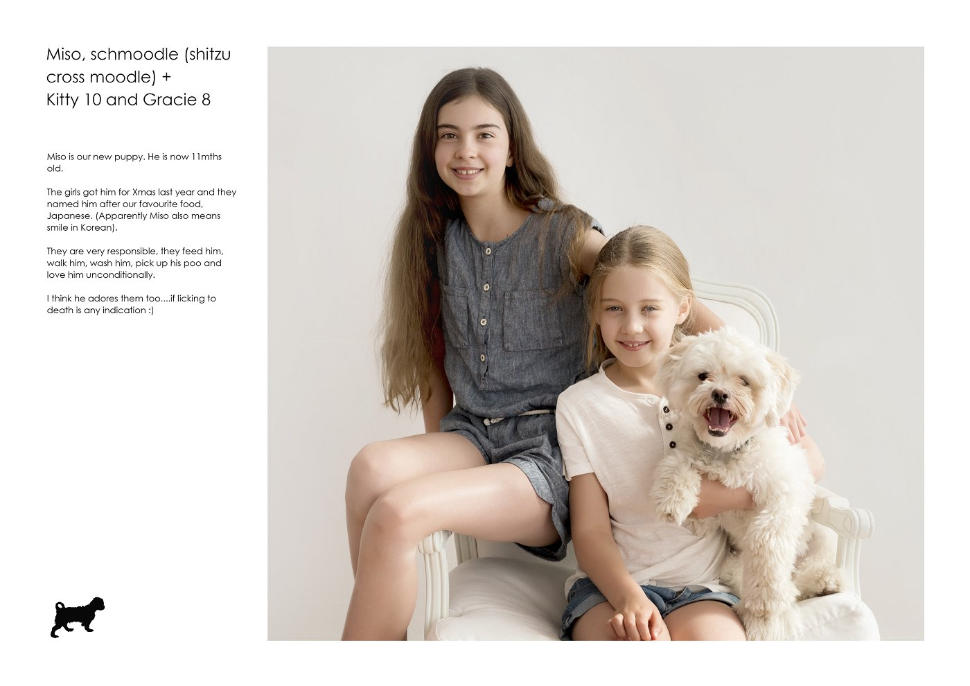 pet-photographer-sydney (56).jpg