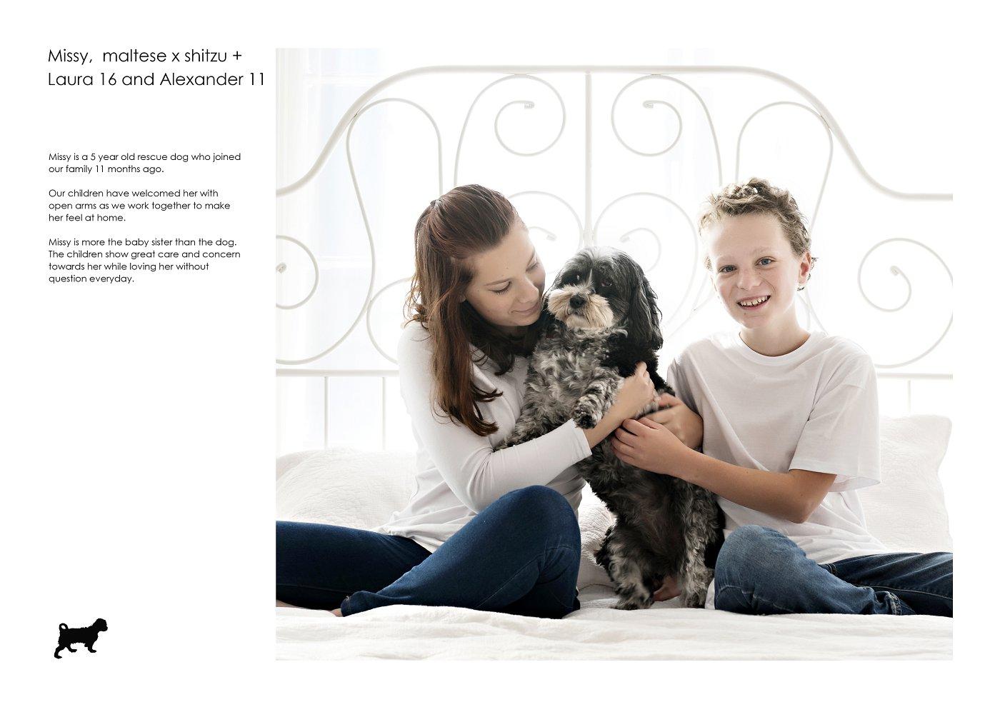 pet-photographer-sydney (57).jpg