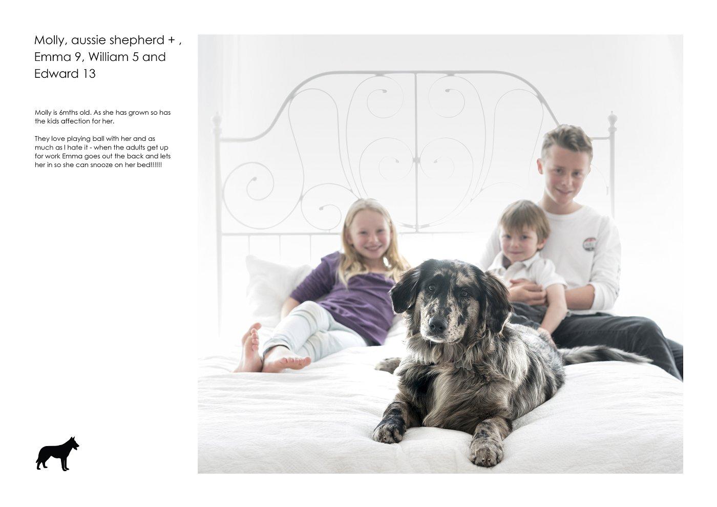 pet-photographer-sydney (59).jpg
