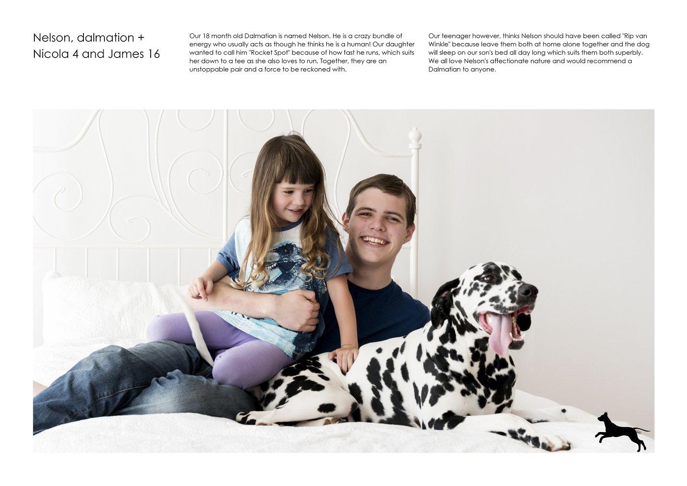 pet-photographer-sydney (63).jpg
