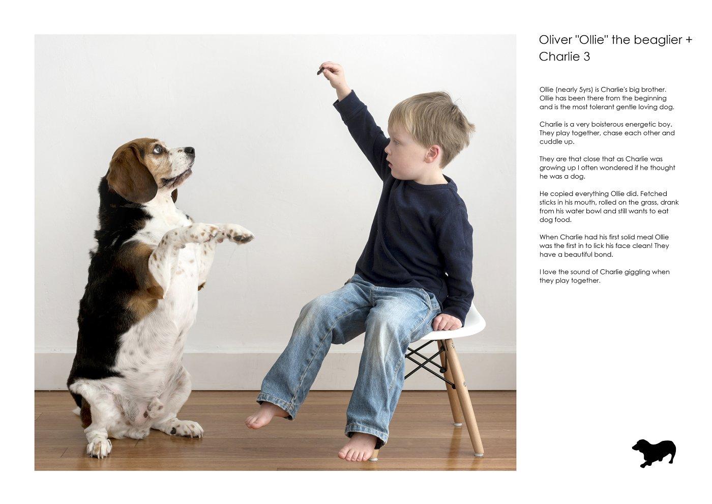 pet-photographer-sydney (65).jpg