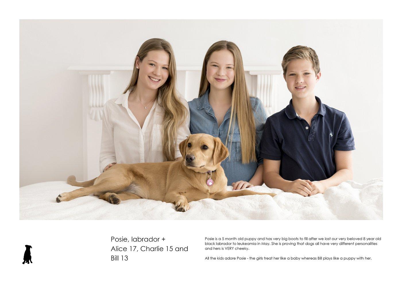 pet-photographer-sydney (71).jpg