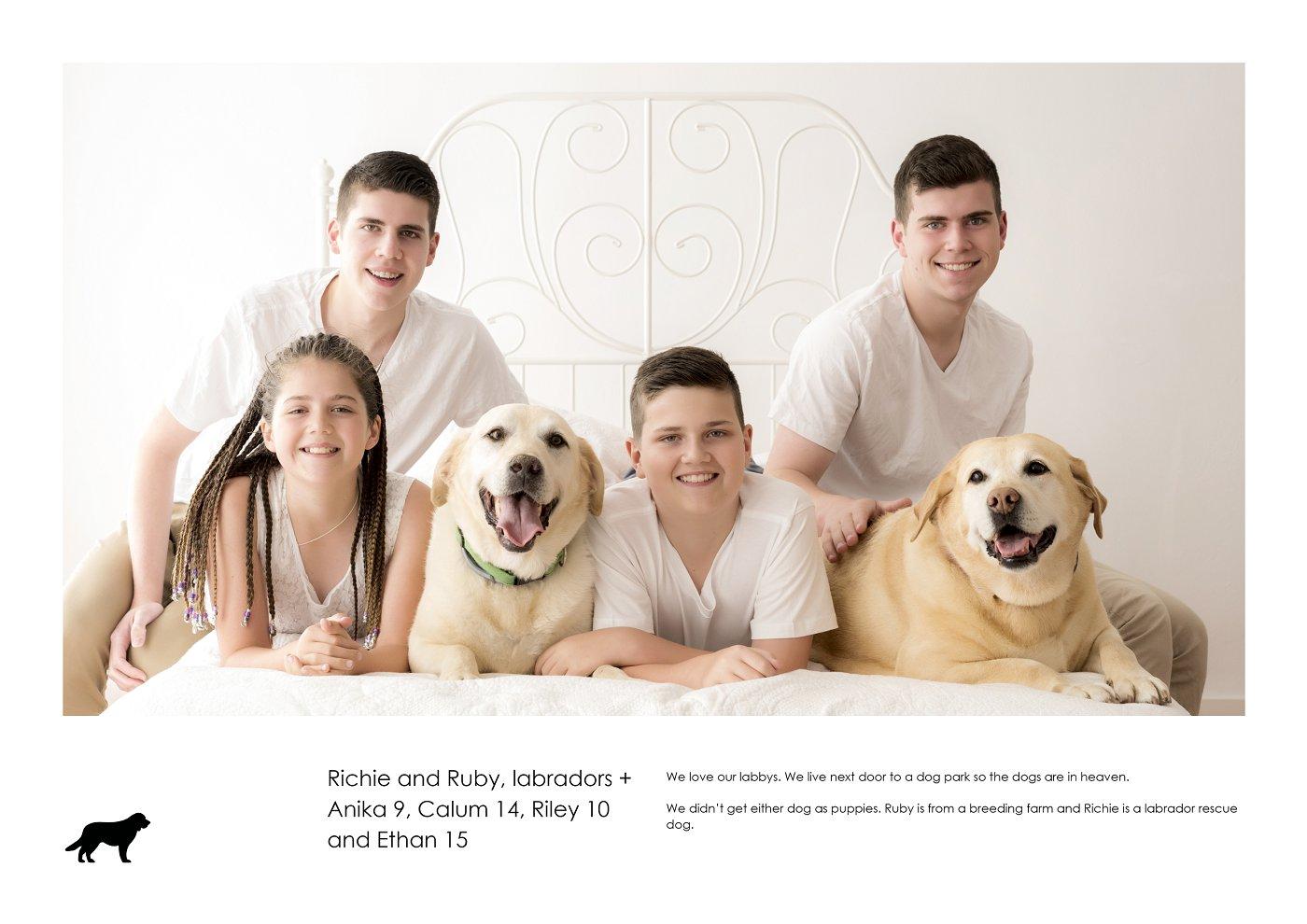 pet-photographer-sydney (73).jpg