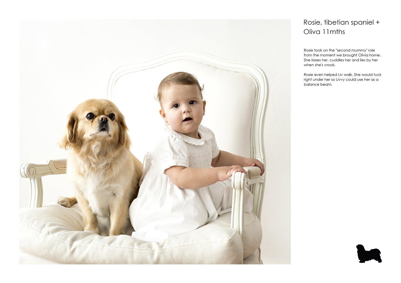 pet-photographer-sydney (74).jpg