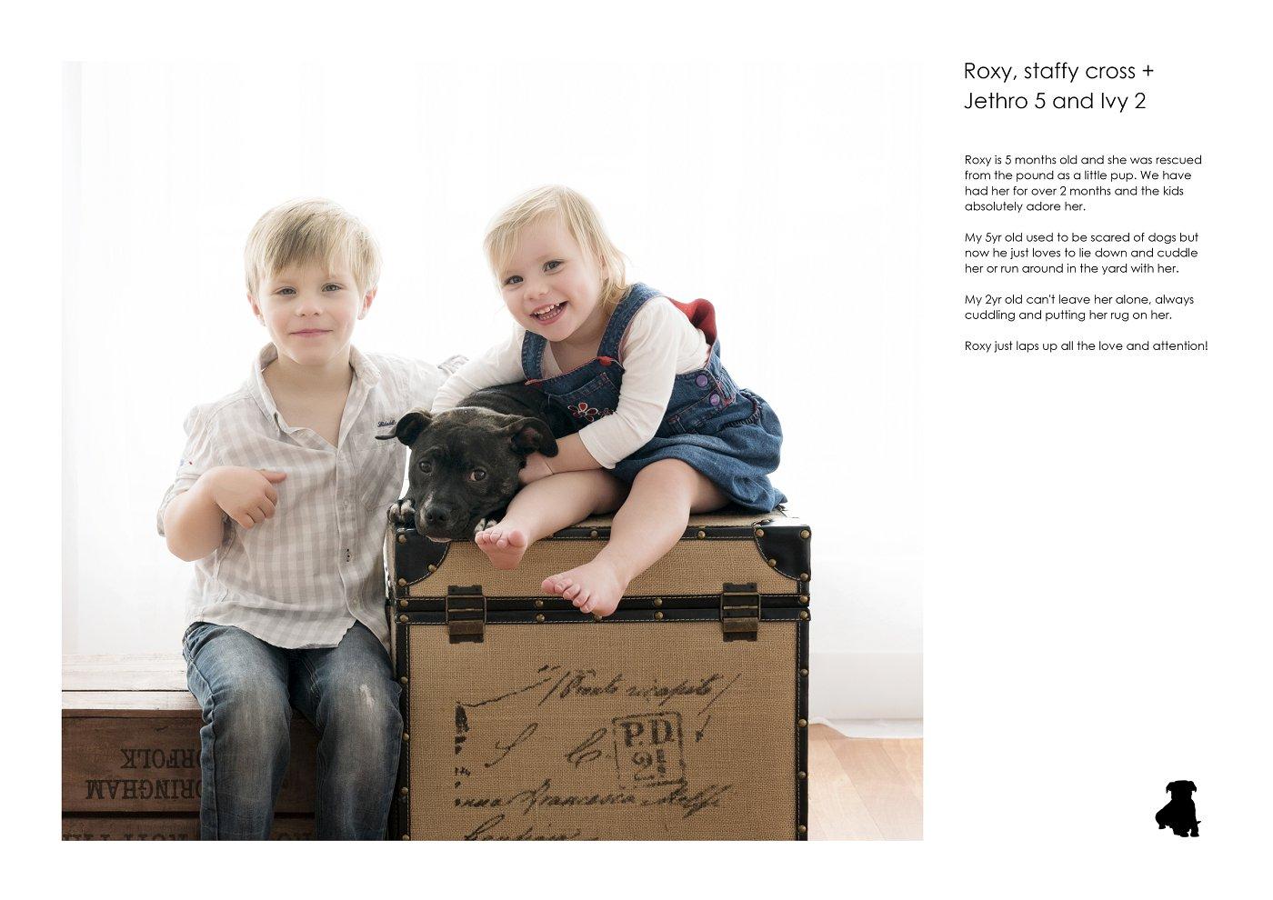 pet-photographer-sydney (75).jpg